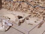 Masada - multi burner stove