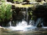Banias - springs of living water