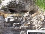 Garden Tomb - Golgotha, the Skull