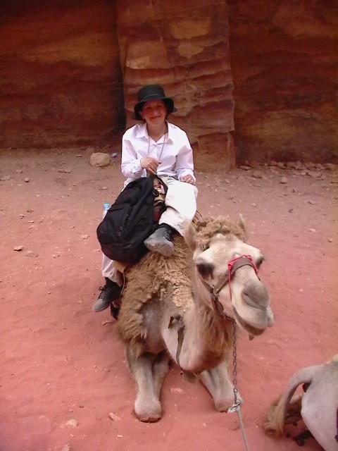Dawn on Camel
